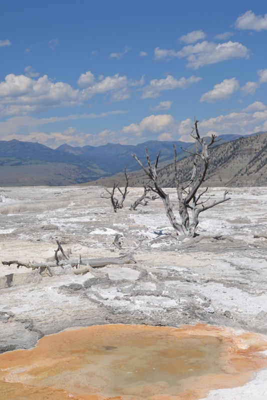 12-photos-that-will-inspire-you-to-visit-yellowstone