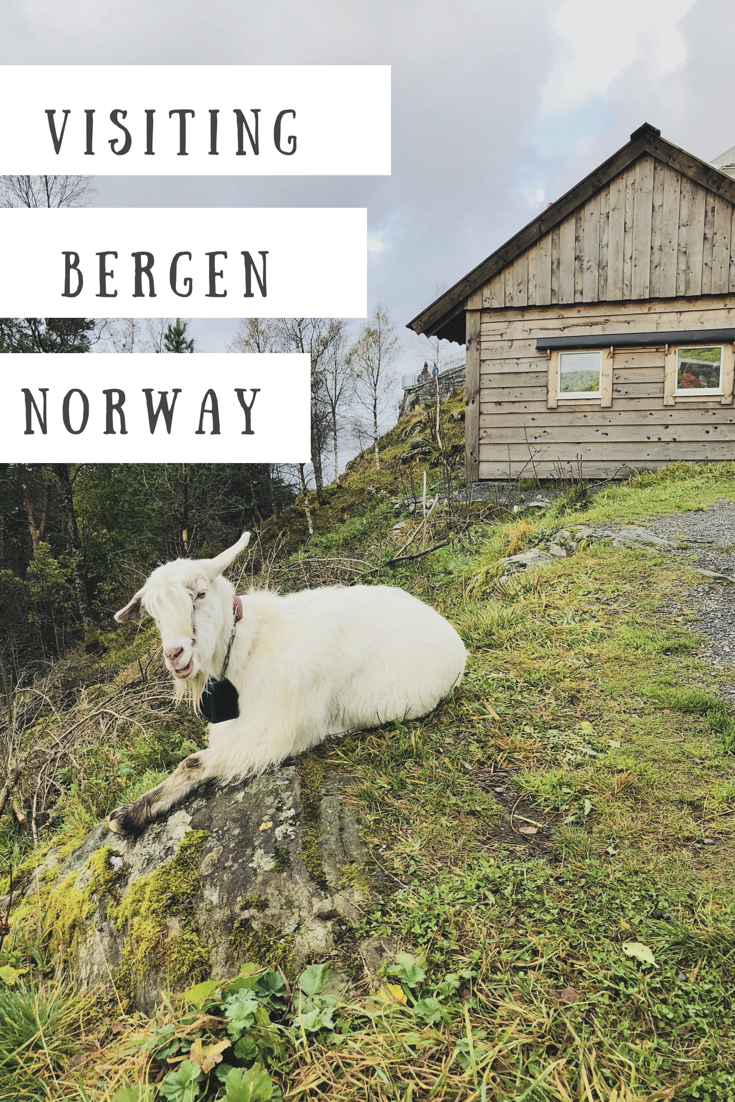 visit-bergen-norway-even-rain
